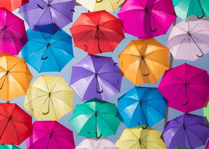 年間200万本の傘の販売実績