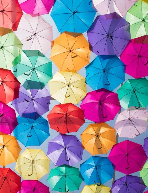 株式会社スギハラは年間200万本の傘販売実績